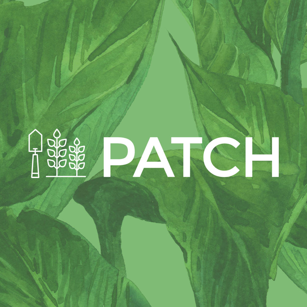 Patch Gardens
